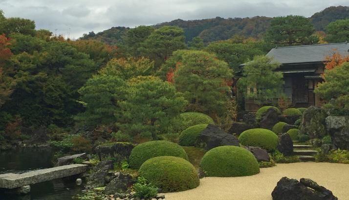 池庭と山1